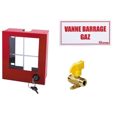 Coffret coupure Gaz avec vanne NF RG8 - mâle 20x150 - 155x140x70mm