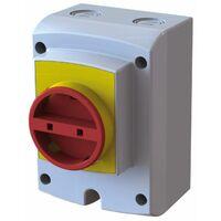 Coffret Interrupteur de proximité - Coffret 4 pôles 20 Ampères pour appareils en Triphasé (petit modèle)