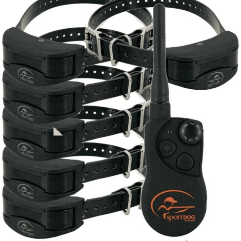 Collar Adiestramiento 6 Perros Sportdog trainer SD-1825 1600 mts