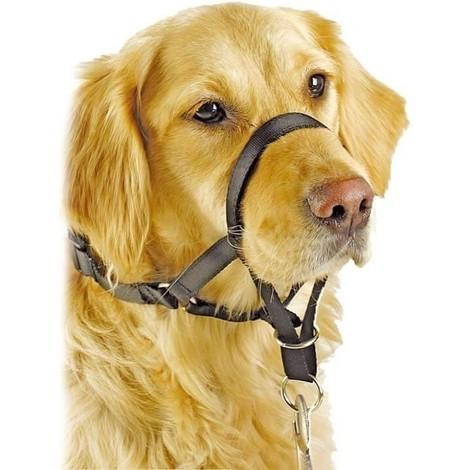 Collar Anti Tirones PAWISE