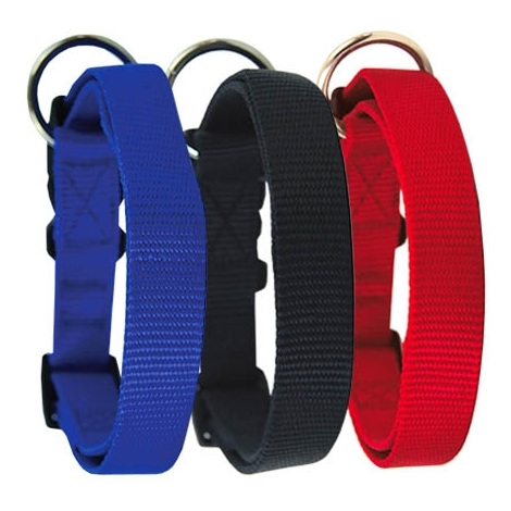 Collar de nylon para perros de colores con cierre especial de seguridad ajustables, disponible en varias medidas y colores