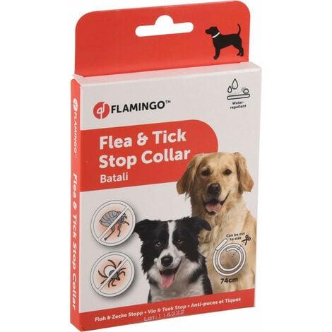 Collar de perro antiparasitario de 74 cm. Pulgas y garrapatas BATALI.