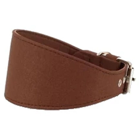 Collar para galgo   Collar para galgo forrado   Collar para galgo color marrón