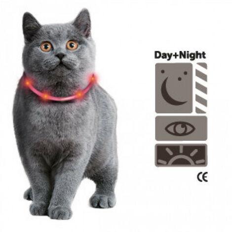 Collar para gato brillante con luz LED, color naranja de 35 cm.
