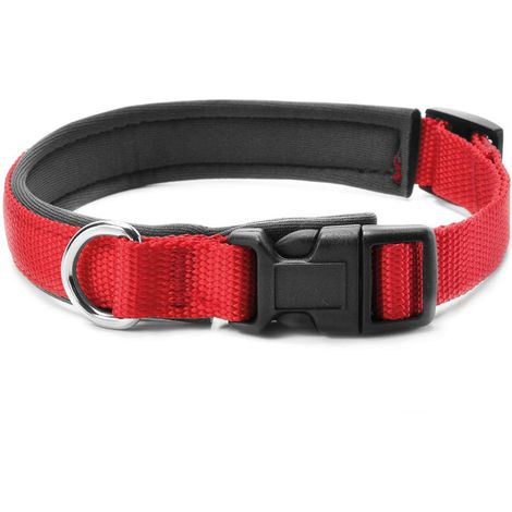 Collar para perro de nylon y neopreno con clip de plástico Record