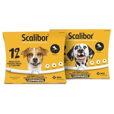 Collar Scalibor 12 Meses L (65cm)
