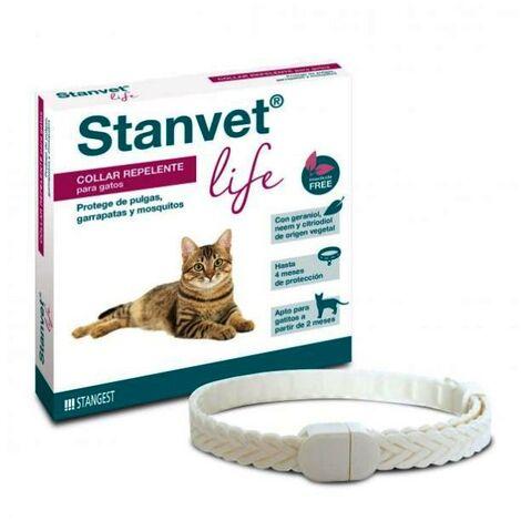 Collar Stanvet Life Gato