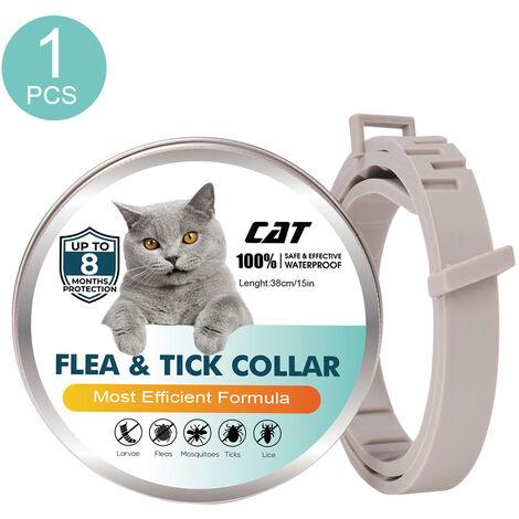 Collares para gatos, collares resistentes a pulgas y garrapatas