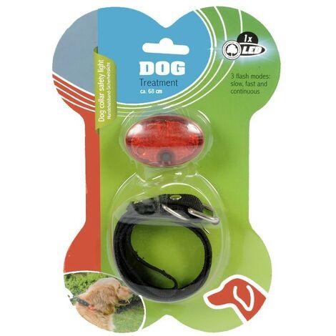 Collier de chien avec un éclairage de secours LED