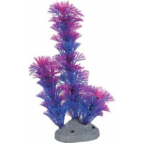 Color plante bleu S