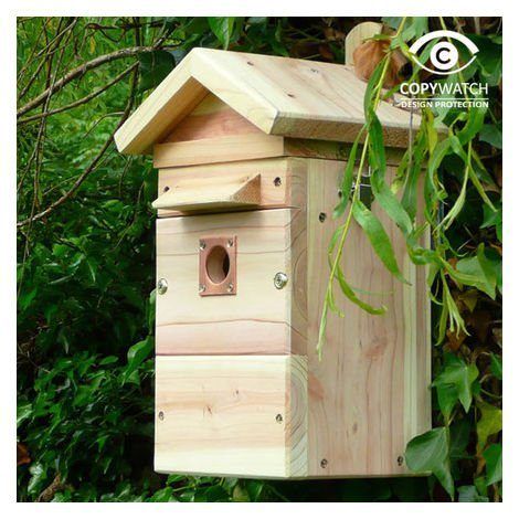 Colour/infrared Camera Nest Box/Bird Table Camera