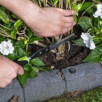 Coltello estirpatore utensile manuale giardino
