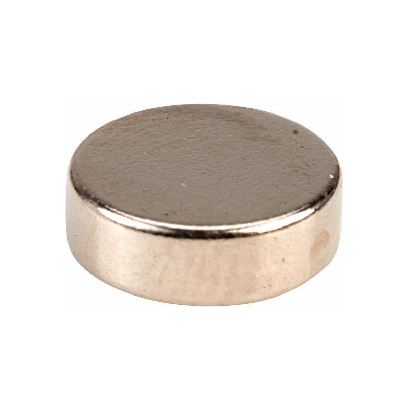 Image of M1219-4 Neodynium Disc Magnet - Comus