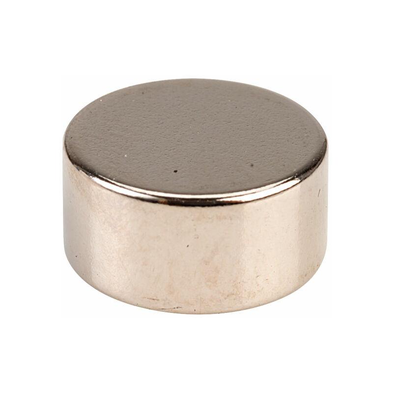 Image of M1219-5 Neodynium Disc Magnet - Comus