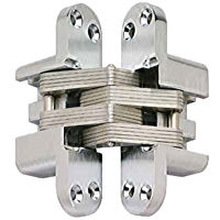 Concealed Door Hinge -12.4 x 45mm - size - color