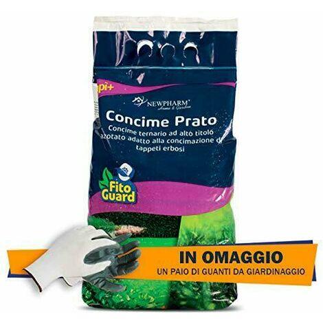 Concime Granulare per Prato Erboso tappeto 5 kg nutrimento prato giardino+omaggio