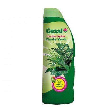 Concime liquido per piante verdi 1 Lt. by Gesal