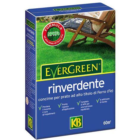 Concime per prato Rinverdente 2kg Evergreen KB