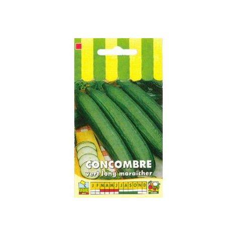 Concombre vert long maraîcher - 3g