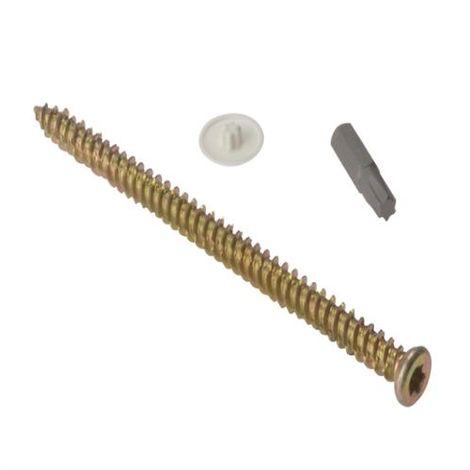 Concrete Frame Screws, Torx® Bit & Caps