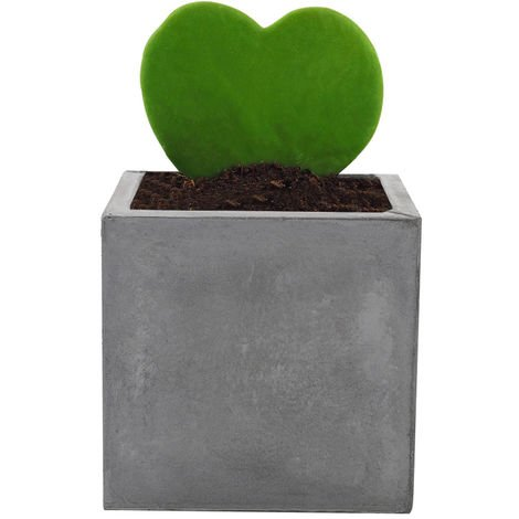 Concrete Plant Flower Pot With Drainage Hole Garden Patio Balcony Planter Pot Square 19x19x19 cm Grey
