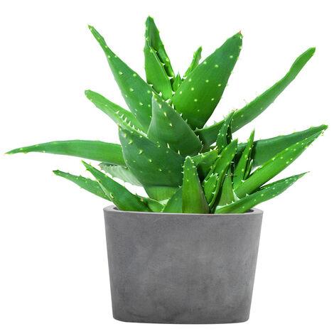 Concrete Plant Flower Pot With Drainage Hole Triangle Garden Patio Balcony Planter Pot