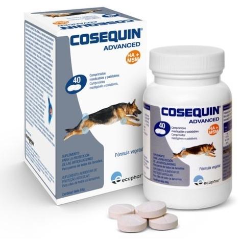 Condroprotector Cosequin Advanced para perros (Taste HA) - 40 COMPRIMIDOS