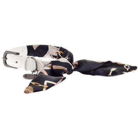 Conjunto con collar y correa coordinado para la línea de perros OPERA' TOSCA Ferribiella