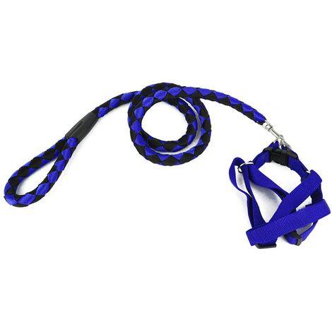 Correa corta en dos tonos 120 cm ART 5824 perros pequeños-medianos | Azul-negro