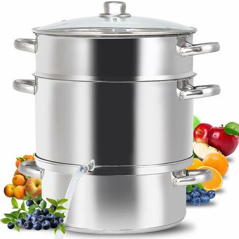 COSTWAY 9L Dampfentsafter aus Edelstahl, Fruchtentsafter mit Glasdeckel, Kochgeschirr induktionsgeeignet, zur Saftherstellung, Gelee, Kochtopf, Silberfarben