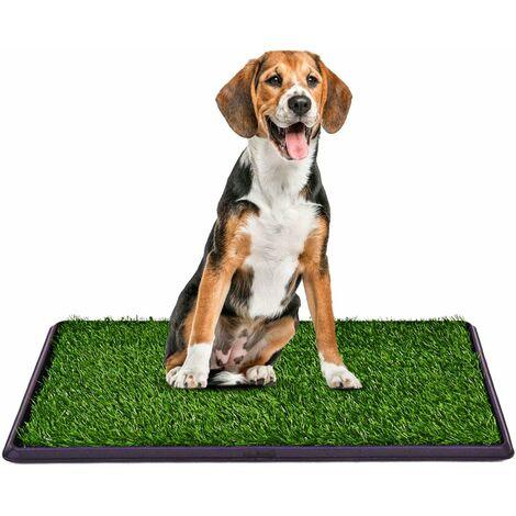COSTWAY Pelouse de toilette chien Litière pour chien Tapis de toilettes pour chien 50 x 75cm