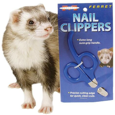 Coupe ongle pour furet Marshall