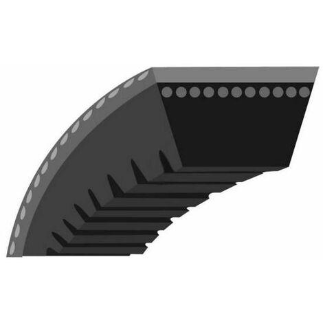 Courroie crantée tondeuse Toro 56cm