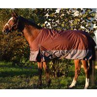 Couverture d'hiver pour cheval 155cm - Lacmé