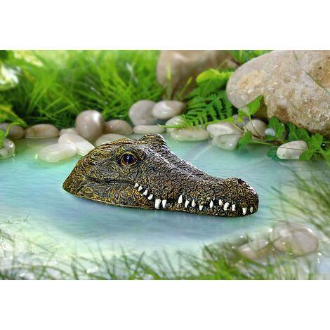 Crocodile de bassin