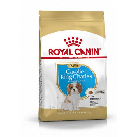Croquettes pour chiot Cavalier King Charles Royal Canin Breed Junior Sac 1,5 kg