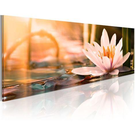 Cuadro - Beautiful Lotus