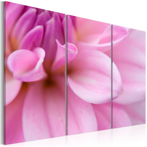 Cuadro - Dahlia de color rosa - 120x80