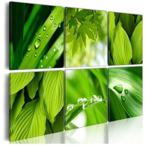 Cuadro - El verde fresco de las hojas