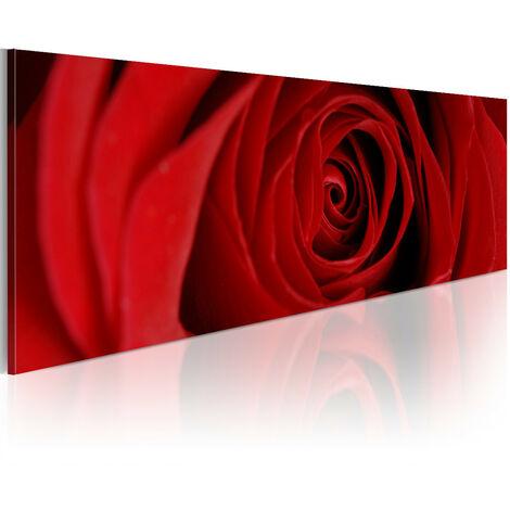 Cuadro - La rosa del norte - 120x40