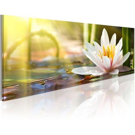 Cuadro - Lotus' Glow