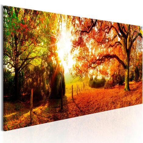 Cuadro - Magic of Autumn