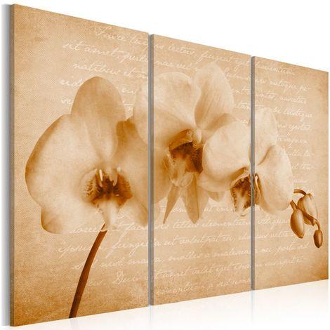 Cuadro orquídea vintage cm 120x80 Artgeist