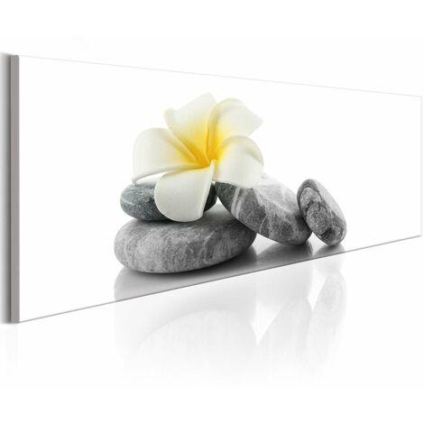 Cuadro - White Lotus