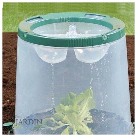 Cubo de cultivo transparente 35x35x30 cm resistente UV