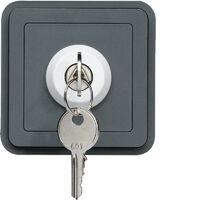 cubyko interrupteur à clé 2 positions associable gris (WNA035)
