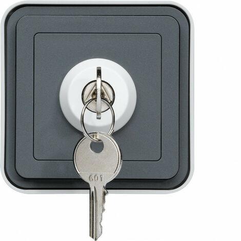 cubyko interrupteur à clé 3 positions saillie gris IP55 (WNC036)