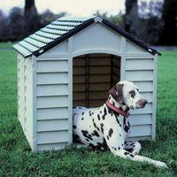 Casette Per Cani In Plastica.Cucce Per Cani