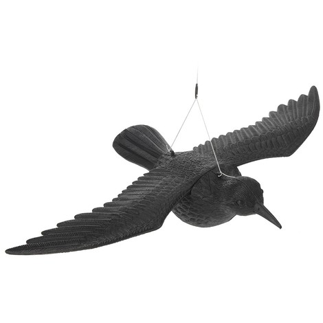 Cuervo Negro 57Cm - NEOFERR