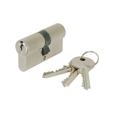 Cylindre asymétrique nickelé série F5S (3 clés) Ifam - plusieurs modèles disponibles